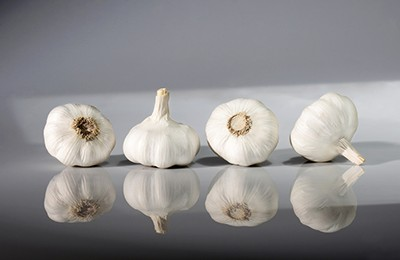 Early Garlic White
